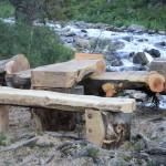 В Катунском заповеднике создали арт-объект (фото)