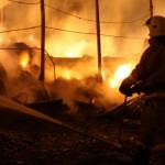 7 тыс. центнеров сена сожгли у фермера в Кызыл-Озеке