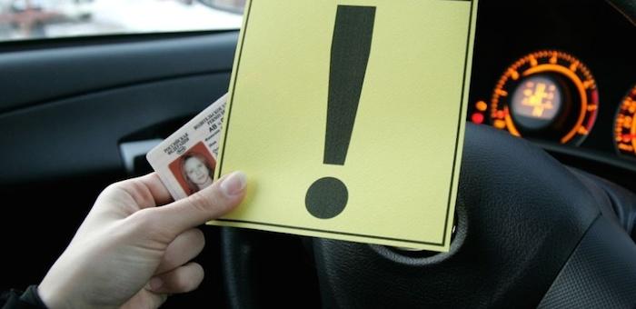 На Алтае сократилось количество ДТП, совершенных начинающими водителями