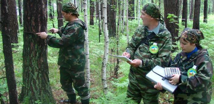 В республике готовятся к лесоустроительным работам