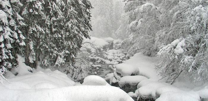 На выходных на Алтае ожидаются снег и метели