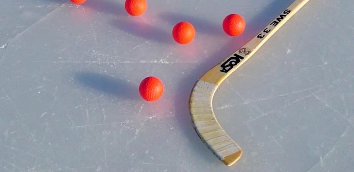 Команда правительства одержала победу в турнире по ринк-бенди