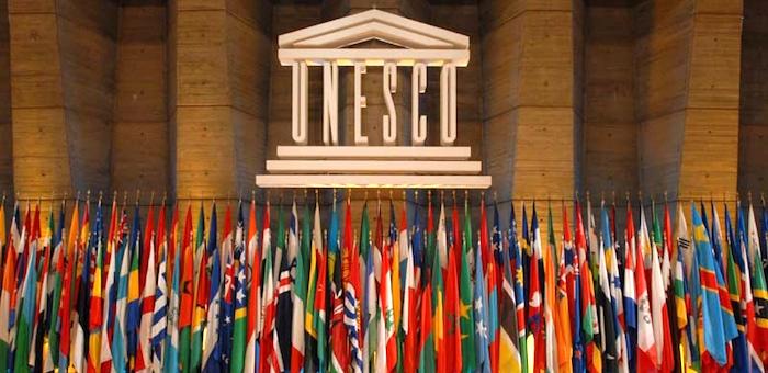Иван Белеков встретился с гендиректором ЮНЕСКО