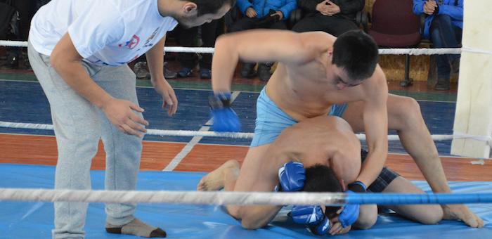 В Онгудае прошел чемпионат по смешанным единоборствам