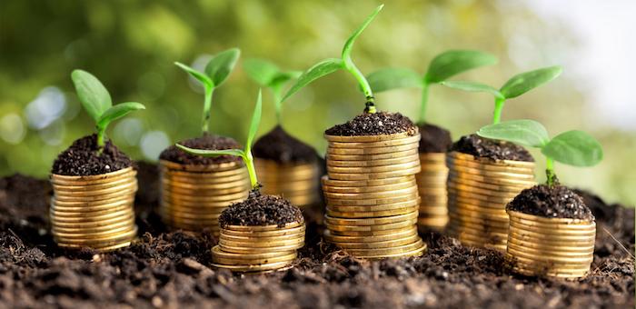 Семь кооперативов получили гранты на организацию переработки сельхозпродукции