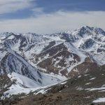 Уникальные фото и видеокадры со снежным барсом сняли в Горном Алтае