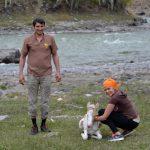 Фотофакт: Туристы спасли жеребенка, тонувшего в Чуе