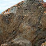 Фотофакт: На Алтае обнаружены древние рунические надписи