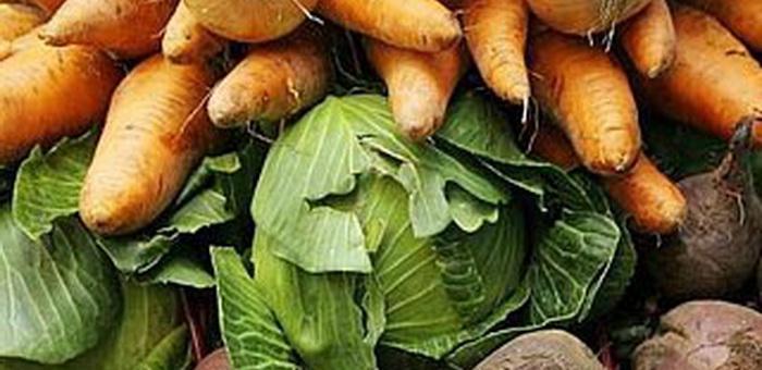Одиноких пенсионеров Горно-Алтайска обеспечат овощами