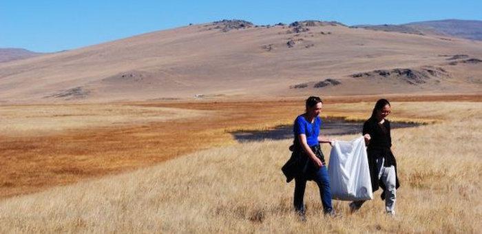 Ученые проверят антропогенную нагрузку на плато Укок