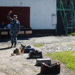 Служебные собаки показали свои умения на соревнованиях в Горно-Алтайске (фото)