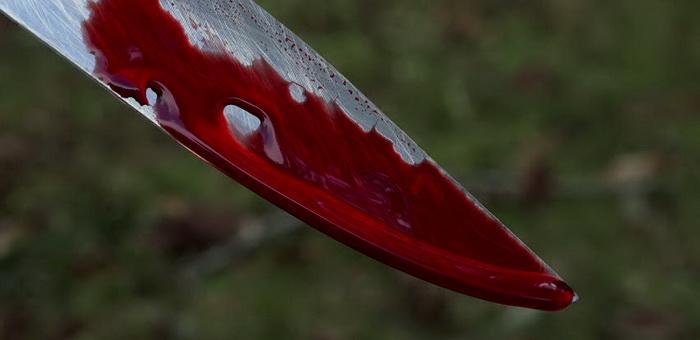 Ссора кемеровских предпринимателей из-за бизнеса в Чемале завершилась убийством