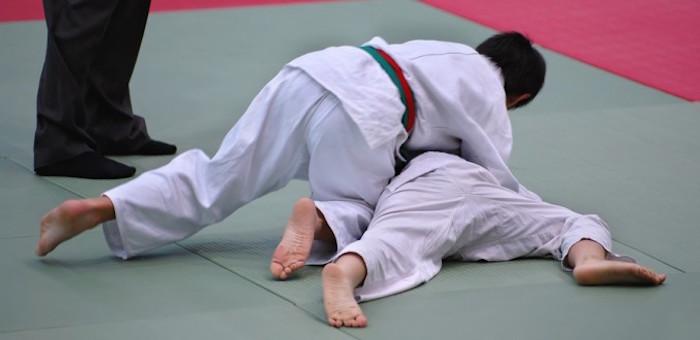 В Горно-Алтайске пройдут состязания по спортивным единоборствам