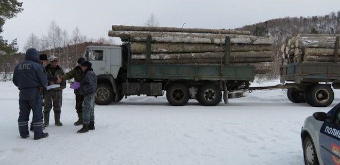 Госинспекторы пресекли незаконную транспортировку древесины