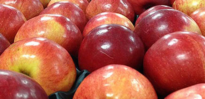 10 кг польских яблок уничтожили в Майме