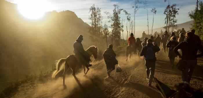 Кони, драки, горы и наводнения чаще всего снятся жителям Республики Алтай