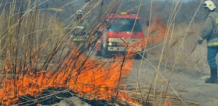 Два лесных пожара произошло на выходных в Горном Алтае