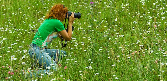 Творческий конкурс, посвященный Году экологии, объявили на Алтае