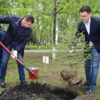 50 человек приняли участие в акции посадки леса