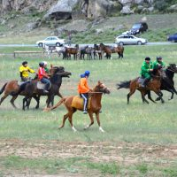 Соревнования по кок-бору начались в Онгудайском районе