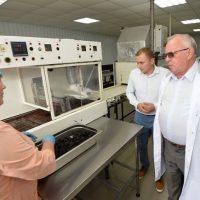 В Горно-Алтайске запустили кондитерское производство
