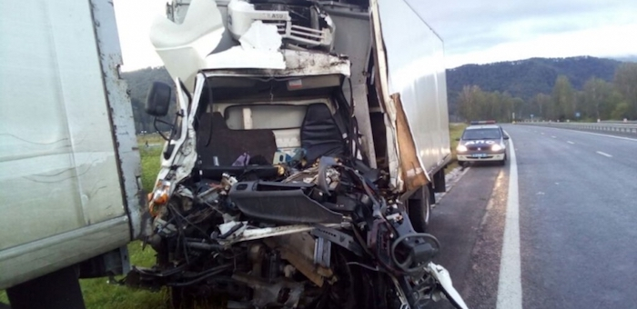 Два грузовика столкнулись из-за вышедших на дорогу лошадей, один человек погиб