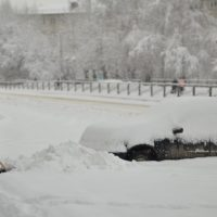 Стихия. Сильный снегопад обрушился на Алтай (фото)