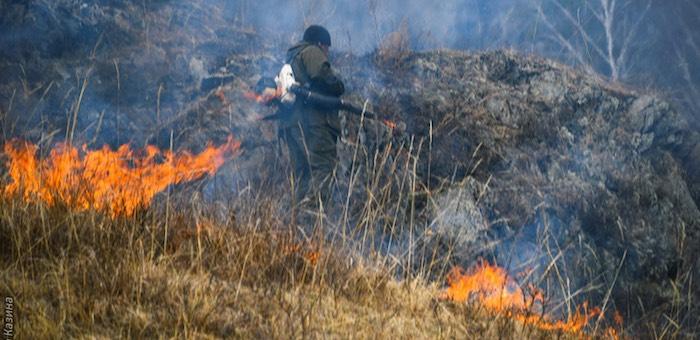 В Чемальском районе произошел природный пожар