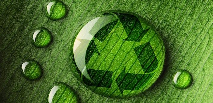 На Алтае начинаются работы по экологической реабилитации территории ртутного предприятия