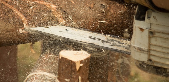 Мужчина ломом отстаивал право вывезти опилки с территории лесничества