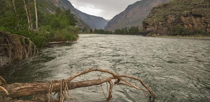 МЧС предупреждает о подъеме уровня воды в Чулышмане