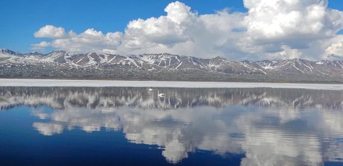 Нерест хариуса на озере Джулукуль впервые за много лет прошел спокойно