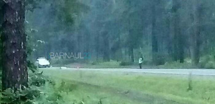 В Чемальском районе погиб турист, по которому проехали две машины