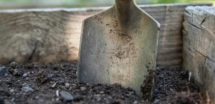 Мужчина на пасеке убил двух человек и закопал там их тела