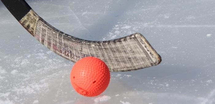 Объявлен набор детей в секцию хоккея с мячом