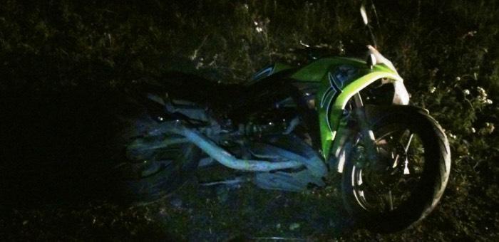 В Элекмонаре мотоцикл налетел на лежащего коня. Водителя и пассажира спасли шлемы