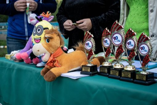 Два турнира по конному спорту прошли в Горно-Алтайске