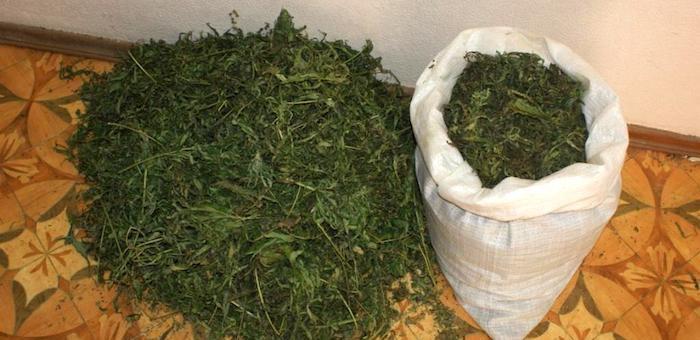 Два мешка марихуаны весом 21 кг изъяли у мужчины в Турочакском районе