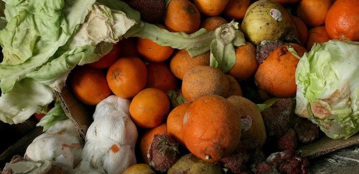 Испорченные фрукты и другие нарушения: прокуроры проверили крупные торговые сети