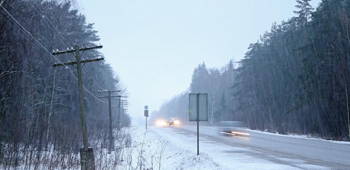 Мокрый снег и заморозки ожидаются на Алтае в ближайшие дни