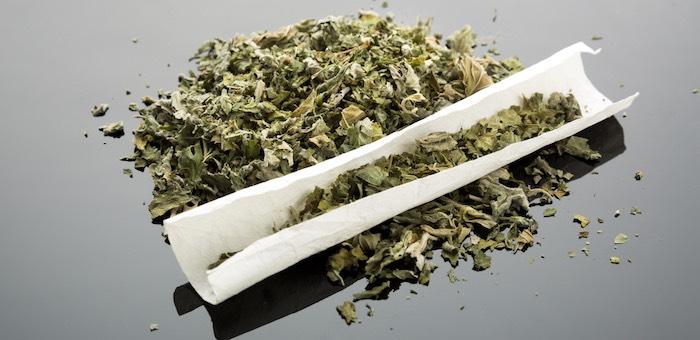 Житель Кош-Агача три года мирно курил марихуану, но потом попался
