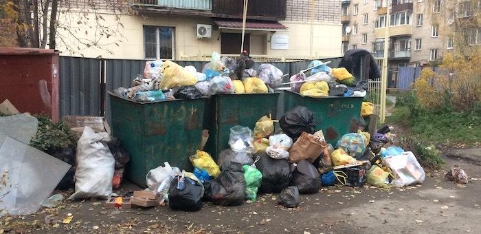 Бердников пригрозил виновным в проблемах с вывозом мусора карами и оргвыводами