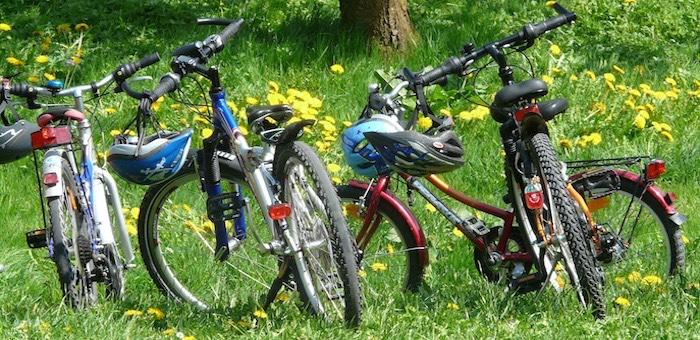 «Велосипедного маньяка» заключили под стражу