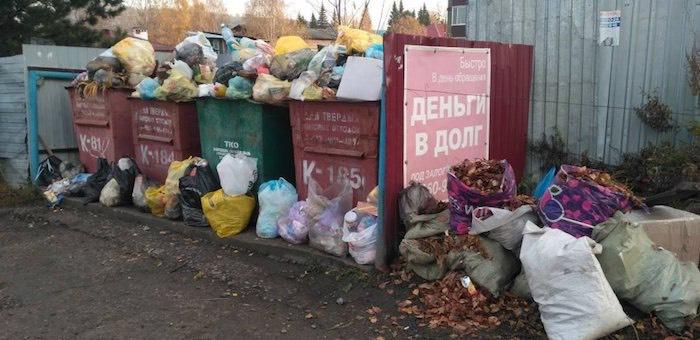 «Коммунальщик» накажут за переполненные мусорные баки
