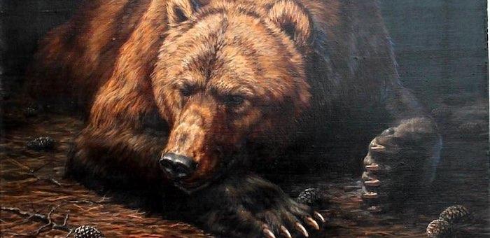 В Алтайском заповеднике медведи наконец-то уснули