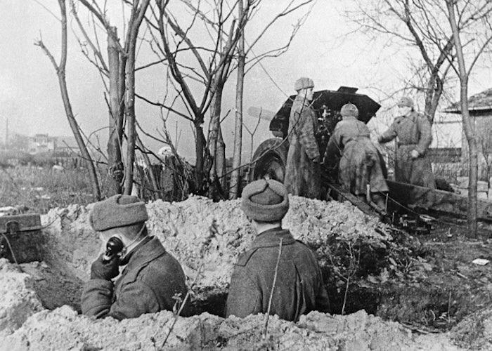 От Москвы до Берлина: боевой путь разведчика-артиллериста с Алтая