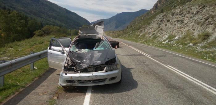 Водитель, не сумевший объехать на дороге корову, ответит в суде за гибель пассажирки