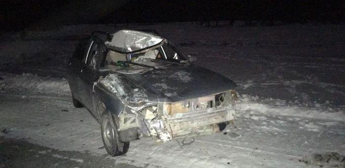 Очередное ДТП из-за разгуливающего по дороге скота произошло в Улаганском районе