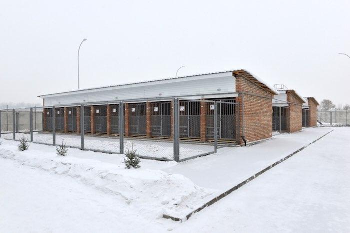 Центр кинологической службы открыли в Республике Алтай