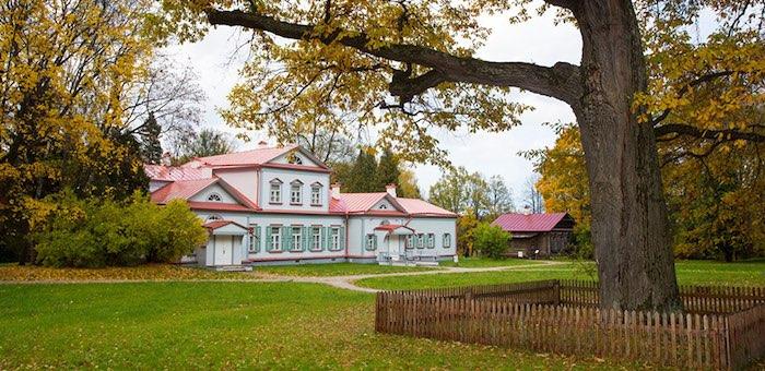 Жителей Алтая приглашают поддержать российский дуб в голосовании за «Европейское дерево года»
